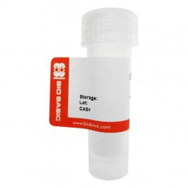 2'-Deoxyadenosine 5'-monophosphate (dAMP), free acid