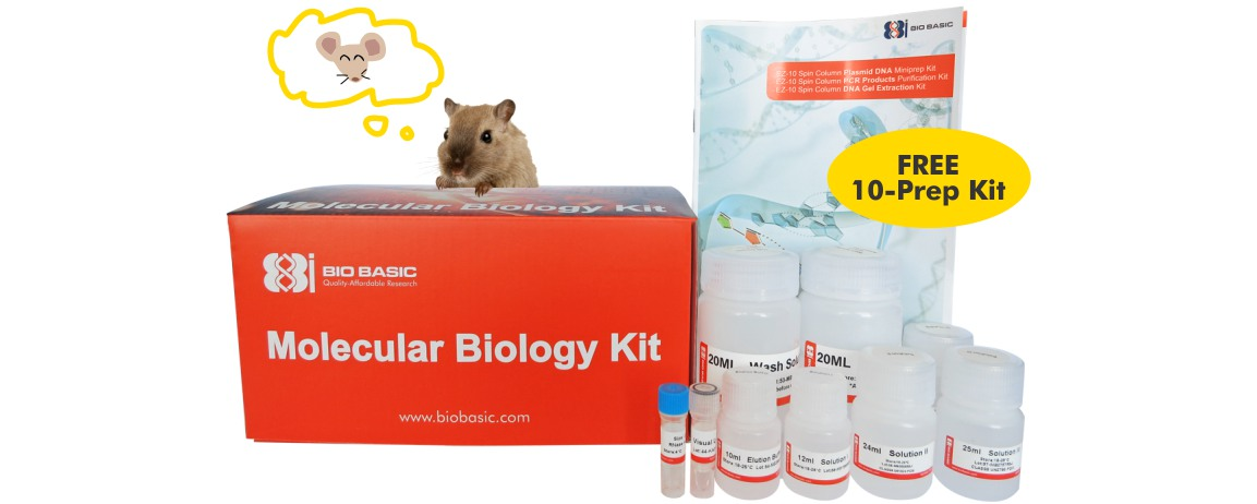 Free DNA Extraction Kit | Bio Basic - Bio Basic