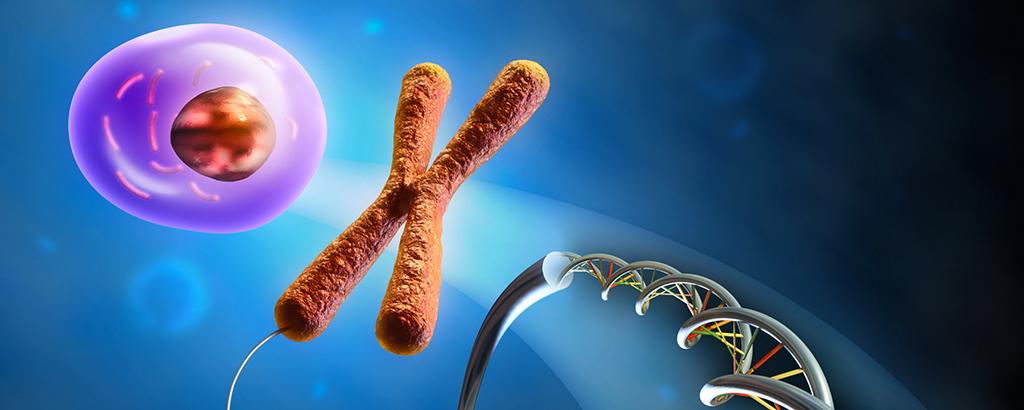 Baculovirus Expression | Custom Protein Production | Bio